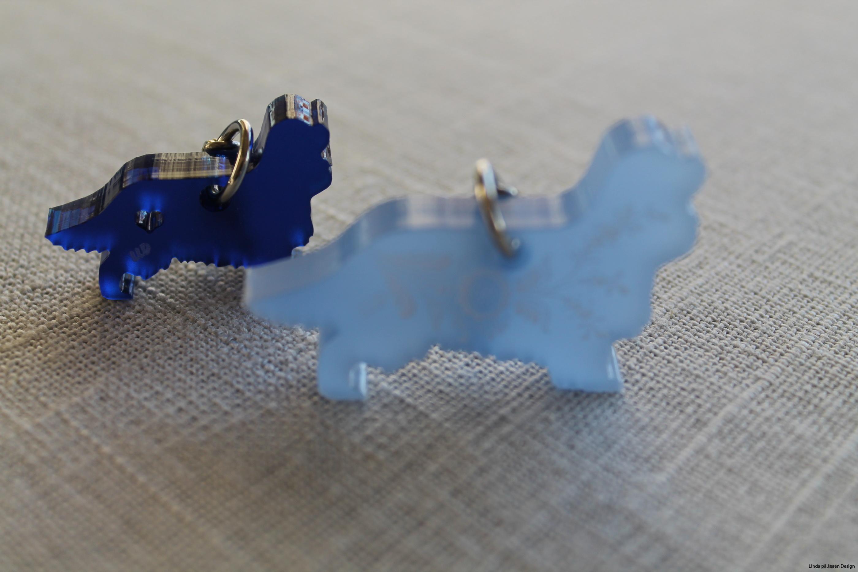 Cavalier King blå pleksi