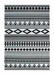 14. BLACK & WHITE MODERN