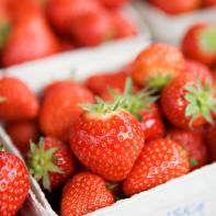 miriam_preis-strawberries-768