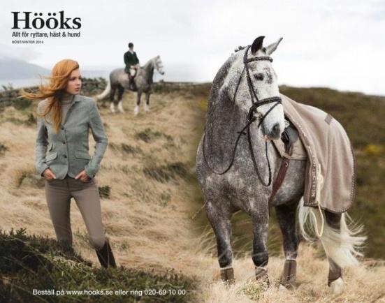 Språkbolaget – översättning av produkttexter till hemsida – Hööks Hästsport