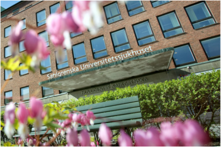 Språkbolaget – translation of medical and pharmaceutical texts – Sahlgrenska University Hospital