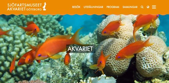 Språkbolaget – översättning av utställningsmaterial, webb- & broschyrtexter – Sjöfartsmuseet Akvariet