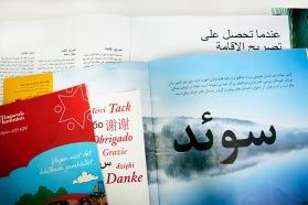 Språkbolaget - partner i språk erbjuder översättning till Sveriges näst vanligaste modersmål, arabiska