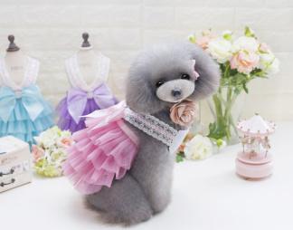Spets klänning - Rosa Small