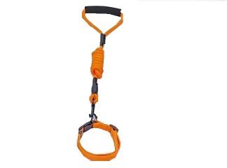 Koppel m. halsband - Orange Small