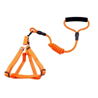 Kroppsele Nylon - Orange Small
