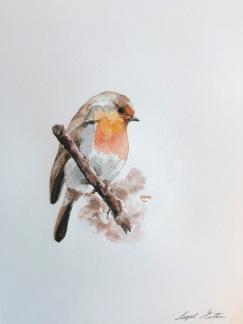 Rödhake av Ingela Matsson