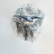 Nötväcka av Ingela Matsson
