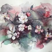 Äppelblommor av Ingela Matsson