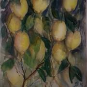Citroner av Tanya Lundmark