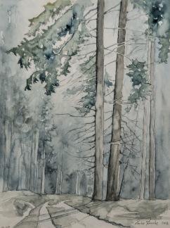 Skogen med två granar av Pontus Runeke