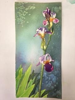 Iris II av Tina Thagesson