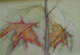 Lönnträdet av Sven Ginstmark