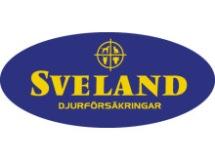 Alla våra katter i jourhemmen är försäkrade via Sveland.
