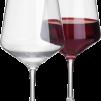 Savoy - Rödvinsglas Savoy 2-p 57cl