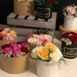 Flowerboxes!