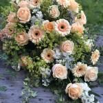 Blommor i aprikosa toner