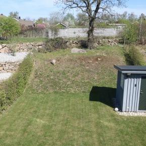 trädgård utsikt