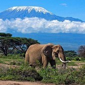 15-top-rated-tourist-attractions-in-tanzania