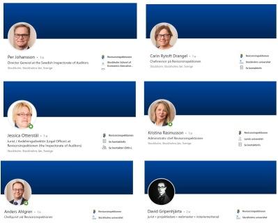 LinkedIn intern profil Revisorsinspektionen