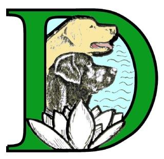 Labradorklubben Sörmland ansvarar för scurryn.
