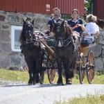 Anna-Lena och Christer med hästarna Åke och Ulla