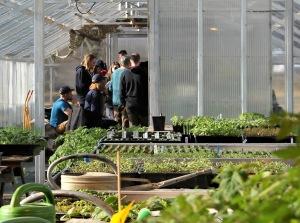 Undervisning i ett av våra växthus