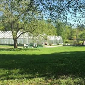 De 4 växthusen med plantskola