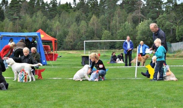Barn med hunds domare, Lars Petersen berömmer de mycket duktiga barnen.