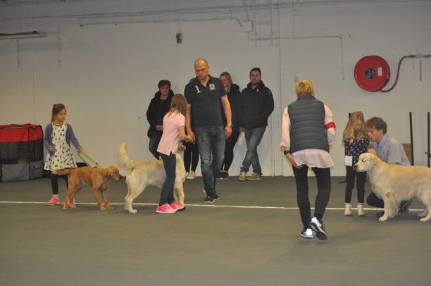 Fyra härliga handlers i Barn med hund, f.h Elin Christiansson och Matilda Christiansson