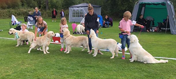 Fem härliga handlers i Barn med hund.