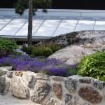 Låga växter innanför naturstensmur