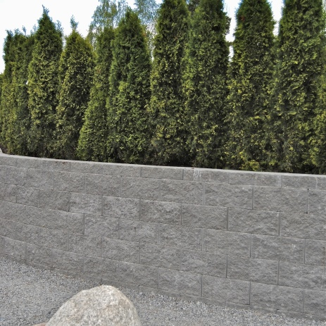 Mur i betongmursten och thujahäck