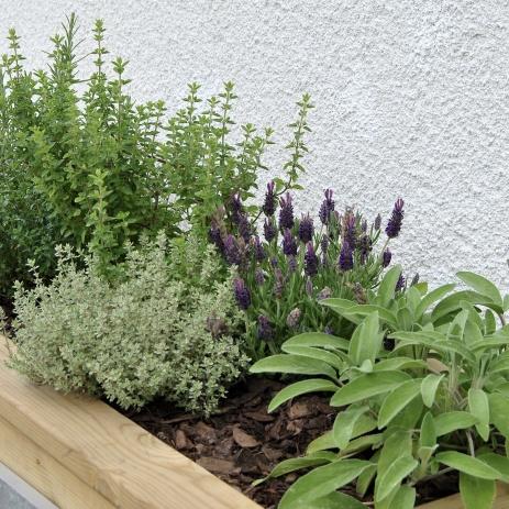 Planteringslådor utmed husväggen.