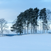 Januari, foto Conny Andersson