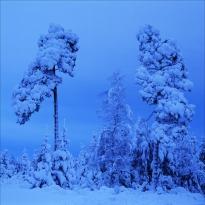 December, foto Stig Olsson