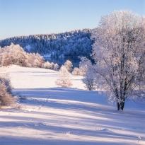Februari, foto Conny Andersson