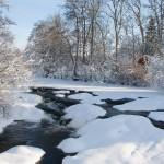 Januari, foto Willy Tinmark