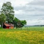 Juni, foto Conny Andersson
