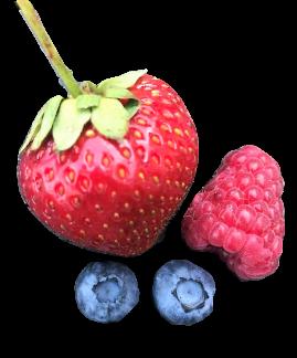 Frukt/bärkasse