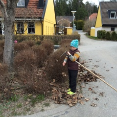 Barnen hjälper alltid till när vi har städdagar !