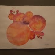 circles in orange