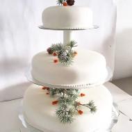 Bröllopstårta havtorn, tallkvistar