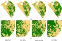 Novelty Detection Classifiers in Weed Mapping: Silybum marianum Detection on UAV Multispectral Images.  Silybum marianum coverage based on four novelty classifiers prediction in the study area (a); and in the focus area (b) S. marianum is green colour and other vegetation is yellow