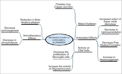 Different mechanisms of action of curcumin in AD