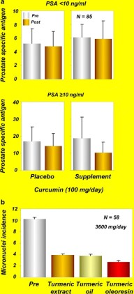 Therapeutic Roles of Curcumin: Lessons Learned from Clinical Trials.  a Serum PSA levels at the baseline (pre) and after administration of isoflavones (40 mg/day) and curcumin (100 mg/day) supplements or placebo (post) for 6 months in participants with PSA < 10 or PSA ≥10 [reprinted with permission from Ide et al., (2010), Prostate, John Wiley and Sons ()]. b Effects of turmeric extract, turmeric oil, and turmeric oleoresin on micronuclei formation in exfoliated buccal mucosal cells of patients with oral submucous fibrosis [reprinted from Cancer Letters, vol 116, Hastak et al., Effect of turmeric oil and turmeric oleoresin on cytogenetic damage in patients suffering from oral submucous fibrosis, pages 265–269, copyright (1997), with permission from Elsevier ()]. PSA, prostate-specific antigen Subash C. Gupta, et al. AAPS J. 2013 Jan;15(1):195-218