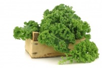 The Secret Life of Kale