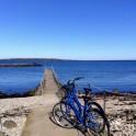 Cykel till Morgonbryggan och bada