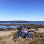 På cykel längs kusten på Bjärehalvön