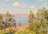 Skärgård med båt 1906